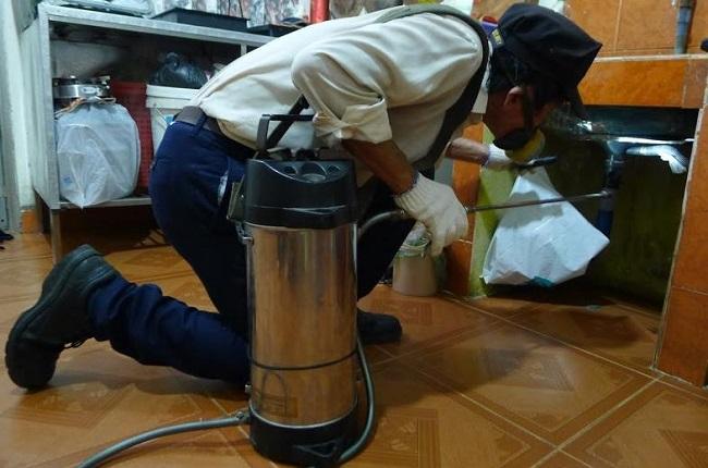 Top 15 dịch vụ diệt mối tận gốc tại Đà Nẵng uy tín nhất